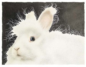 "Will Bullas Limited Edition Print: ""Mr. Harry Buns"""