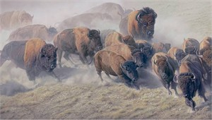 "Daniel Smith Handsigned & Numbered Limited Edition Masterwork™ Giclée Canvas:""Thunder and Dust"""