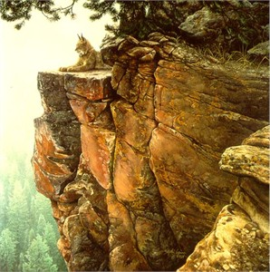 """Steve Lyman Handsigned & Numbered Limited Edition:""""Above the Forest"""""""