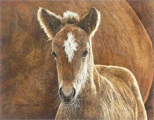 "Judy Larson® Artist Hand Signed and Numbered Limited Edition Fine Art Giclee on Canvas:""Wild in the Country"""