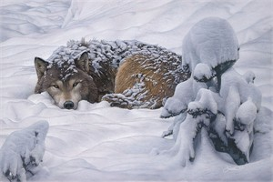"""Daniel Smith Handsigned and Numbered Limited Edition Canvas: """"Winter's Embrace"""""""