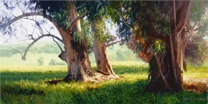 "June Carey Limited Edition Fine Art SmallWorks™ Giclée Canvas:""Eucalyptus Trunks"""