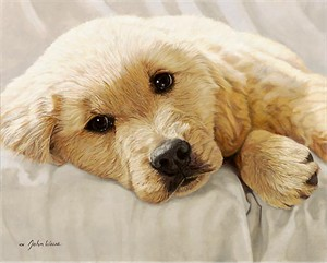"""John Weiss Limited Edition Print:""""Best Loved Breeds Golden Retriever"""""""