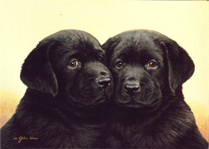 "John Weiss Limited Edition Print:""Double Trouble"""