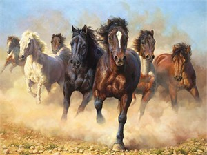 "Bonnie Marris Hand Signed & Numbered Limited Edition Artist Proof Canvas Giclee :""Thunder and Dust"""