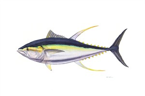 "Flick Ford Hand Signed and Numbered Limited Edition Masterwork Canvas Giclee:""Trophy Yellowfin Tuna"""