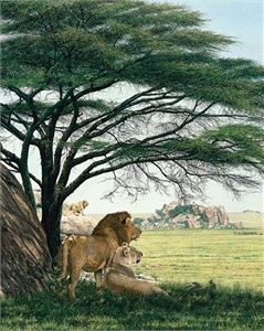 """Simon Combes Masterwork Numbered Limited Edition Giclee on Canvas:""""An African Experience"""""""