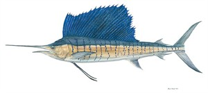 "Flick Ford Handsigned and Numbered Limited Edition Giclee on Canvas:""Sailfish"""