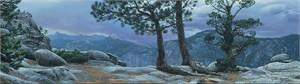 "Stephen Lyman Handsigned and Numbered Fine Art SmallWorks™ Giclée Canvas:""Yosemite Landscape"""
