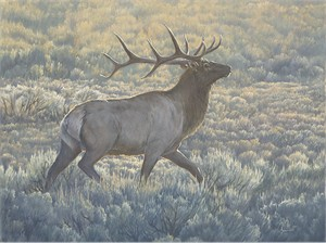 "Aaron Yount Hand Signed and Numbered Fine Art Canvas Giclée:""Morning Run"""