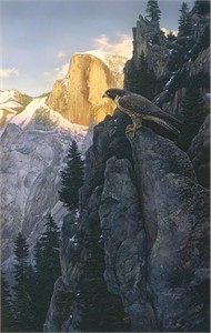 """Stephen Lyman Limited Edition Hand Numbered Anniversary Canvas Giclee:""""Return of the Falcon"""""""