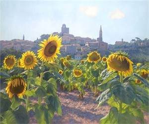 """June Carey Hand Signed and Numbered Canvas Giclee:"""" Sunflowers of Castiglion Fiorentino"""""""