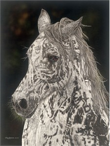 "Judy Larson® Handsigned and Numbered Limited Edition Fine Art Giclee:""American Horse"""