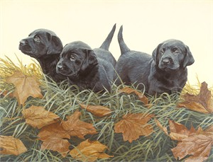 "John Weiss Handsigned and Numbered Limited Edition Anniversary Giclée Canvas:""Lab Puppies - Black labs"""
