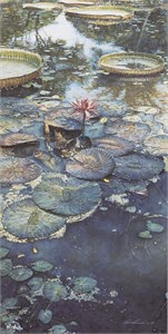 "Steve Hanks Limited Edition Print: ""Water Lilies in Bloom"""