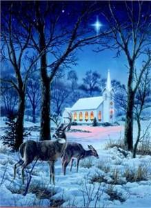"Darrell Bush Open Edition Print: ""A Midnight Clear"""