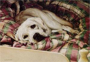 "Suellen Ross Signed Open Edition Print: ""Bed Warmer"""