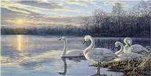 "Darrell Bush Limited Edition Print: ""Daybreak"""