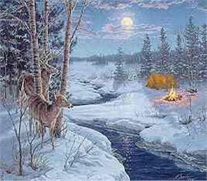 "Darrell Bush Limited Edition Canvas:""Moon Shadows"""