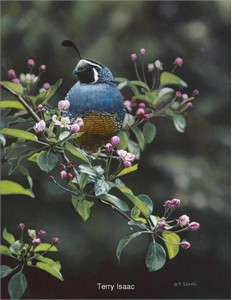 """Terry Isaac Handsigned and Numbered L/E Giclee Canvas: """"Orchard Quail"""""""