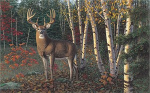 "Kim Norlien Handsigned and Numbered Limited Edition :""Autumn Sentinel"""