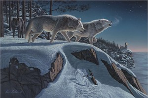 "Kim Norlien Handsigned and Numbered Limited Edition :""Moonlight Prowlers"""