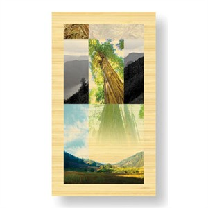 """Peter Kitchell Limited Edition Ready to Hang Giclee on Sustainable Bamboo: """"Sanctuaries Shadow Life"""""""
