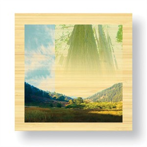 "Peter Kitchell Limited Edition Ready to Hang Giclee on Sustainable Bamboo: ""Shadow Life"""