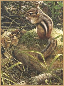 "Denis Mayer Jr Hand Signed and Numbered Limited Edition Canvas Giclee:""Backyard Companion"""