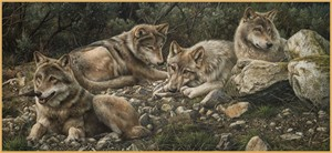 "Denis Mayer Jr Hand Signed and Numbered Limited Edition Canvas Giclee:""Forever Wild"""