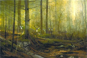 "Michael Coleman Handsigned & Numbered Giclee Limited Edition Print:""Eyes of the Forest - Whitetail Deer """