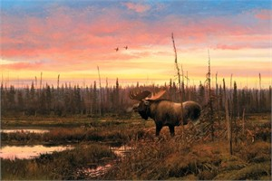 "Michael Coleman Hand Signed and Numbered Limited Edition Giclee:""September - Moose"""