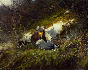 "Michael Coleman Hand Signed and Numbered Limited Edition Giclee:""In the North Woods - Pine Martin"""
