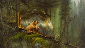 "Michael Coleman Hand Signed and Numbered Limited Edition Giclee:""In the North Woods - Grizzly"""