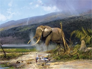 "Michael Coleman Hand Signed and Numbered Limited Edition Giclee:""African Tusker - Bull Elephant"""