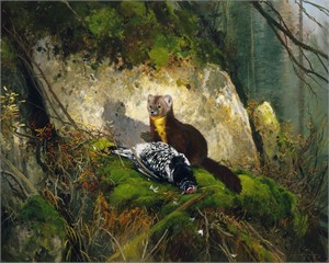 "Michael Coleman Hand Signed and Numbered Limited Edition Giclee:""Spruce Grouse & Pine Martin"""