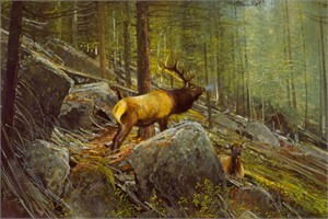 "Michael Coleman Hand Signed and Numbered Limited Edition Giclee:""The Monarch - Bull Elk"""
