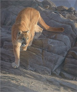 "Daniel Smith Limited Edition Print:""Silent Pursuit"""