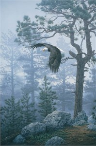 """Daniel Smith Hand Signed and Numbered Limited Edition Rigiclée:""""Shrouded Forest - Bald Eagle """""""