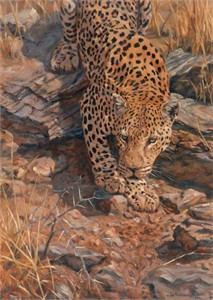 "Julia Rogers Hand Signed and Numbered Limited Edition: ""Leopard Descent """