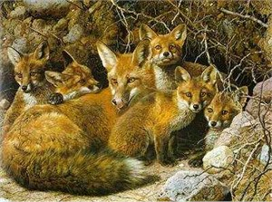 "Carl Brenders Handsigned & Numbered Limited Edition Giclee on Canvas:""Full House - Fox Family"""