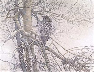 "Robert Bateman Handsigned & Numbered Limited Edition Giclee on Canvas:""Ghost of the North - Great Gray Owl"""