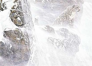 "Robert Bateman Handsigned & Numbered Limited Edition Giclee on Canvas:""High Kingdom - Snow Leopard"""