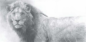 "Robert Bateman Handsigned and Numbered Limited Edition Giclee on Canvas:"" THE WARRIOR"""