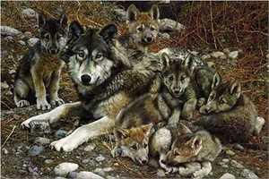 """Carl Brenders Hand Signed Limited Edition Artist Proof Renaissance Canvas Giclee:""""Den Mother-Wolf Family - Sold Out"""""""