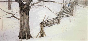 "Robert Bateman Handsigned & Numbered Renaissance Edition Giclee on Canvas :""Window into Ontario"""