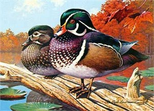 "Rod Lawrence Handsigned and Numbered Limited Edition Paper Signed and Numbered:""Wood Ducks - 1990 Michigan Duck Stamps"""