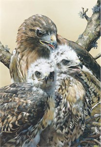 """Carl Brenders Handsigned and Numbered Limited Edition Renaissance Giclee on Paper:""""WISDOM AMD INNOCENCE"""""""
