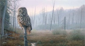 "Brent Townsend Handsigned and Numbered Limited Edition Giclee Canvas Signed and Numbered:""Silent Hunter - Great Gray Owl """