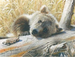 "Carl Brenders Hand Signed and Numbered Limited Edition: ""Time Out -Grizzly Cub"""